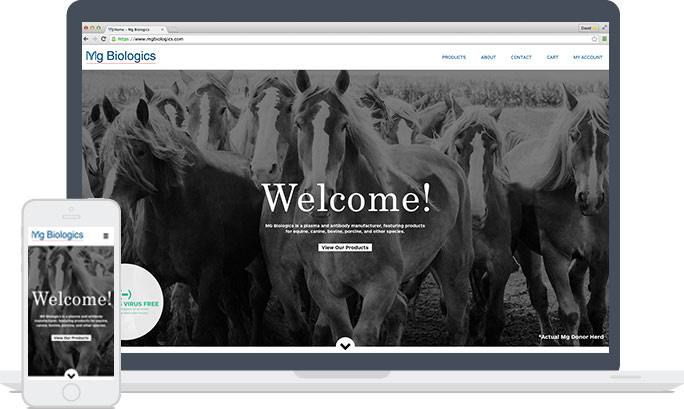 Ames Company Web Design Sample
